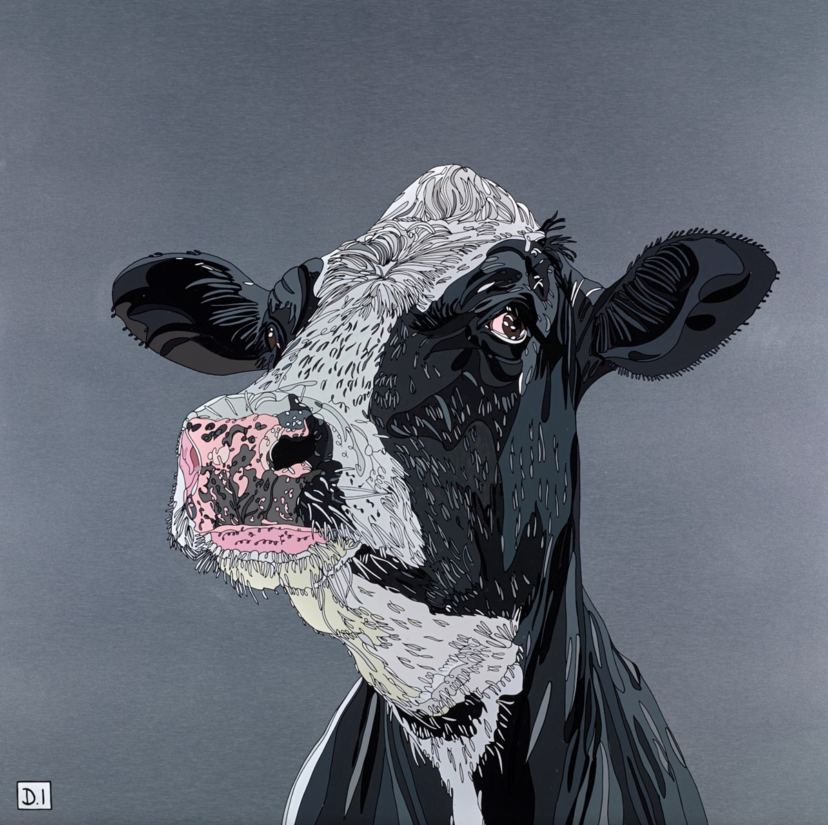 Cow by dylan izaak -  sized 28x28 inches. Available from Whitewall Galleries